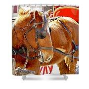 Williamsburg Carriage Horse Shower Curtain