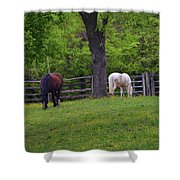 Williamsburg Farm Shower Curtain