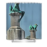 Willimantic Frogs Shower Curtain