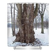 Willow Over Pond Shower Curtain