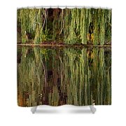 Willow Reflection Shower Curtain