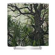 Willow Tree Shower Curtain