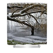 Willow Tree On The Frozen Lake Detail Shower Curtain
