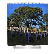 Wilmington National Cemetery Christmas Shower Curtain