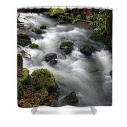 Wilson Creek #15 Shower Curtain