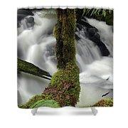 Wilson Creek #17 Shower Curtain
