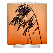 Wilting Sunset Shower Curtain