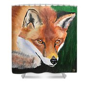 Wily Fox Shower Curtain