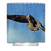 Wind Beneath My Wings Shower Curtain