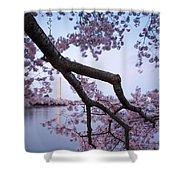 Wind Blossoms Shower Curtain