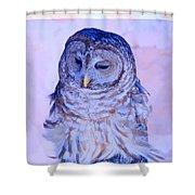 Wind Blown Owl  Shower Curtain