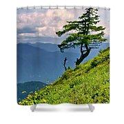 Wind Sculpted Conifer Shower Curtain