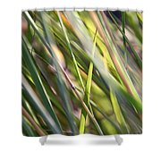 Wind Tossed - Shower Curtain
