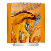 Windance Grass Shower Curtain