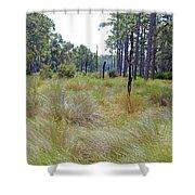 Windblown Grass Shower Curtain