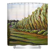 Windbreak Evening Shower Curtain