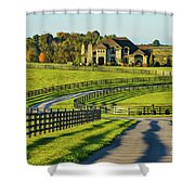 Winding Entrance Shower Curtain