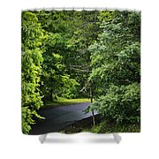 Winding Road Bluestone State Park West Virginia Shower Curtain