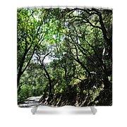 Winding Road Santa Ynez Mountains Shower Curtain