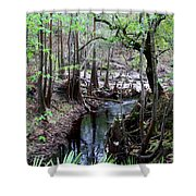 Winding Sopchoppy River Shower Curtain