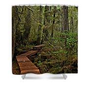 Winding Through The Willowbrae Rainforest Shower Curtain