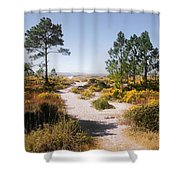 Windmark Beach Florida Shower Curtain