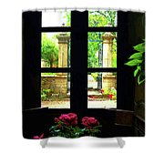Window And Roses Shower Curtain