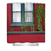 Window And Vines Shower Curtain
