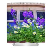 Window Box With Pansies Shower Curtain