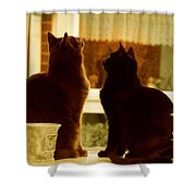Window Cats Shower Curtain