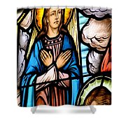 Window Detail The Assumption Shower Curtain