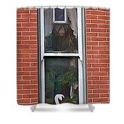 Window Dressing Shower Curtain