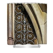 Window Elements Shower Curtain by Todd Blanchard