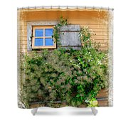 Window Floral In Plymouth Shower Curtain
