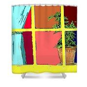 Window Shower Curtain