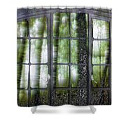 Window On The Woods Shower Curtain