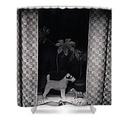 Window Scene Shower Curtain