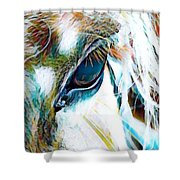 Window To The Soul 2 Shower Curtain