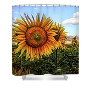 Window To The Sunflower Fields Oil Painting Shower Curtain