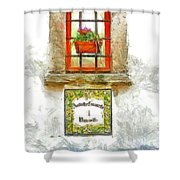 Window With Flower Pot Shower Curtain