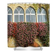 Windows In Spring Shower Curtain