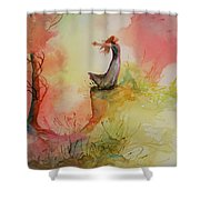 Winds Of Freedom Shower Curtain