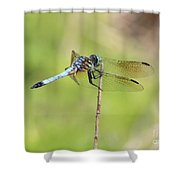 Windswept Dragonfly Shower Curtain