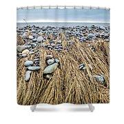 Windswept Grass At Lawrencetown Beach, Nova Scotia Shower Curtain