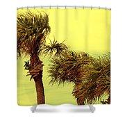 Windy Palms Shower Curtain