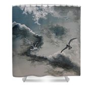 Windy Weather Shower Curtain by Diane Kraudelt
