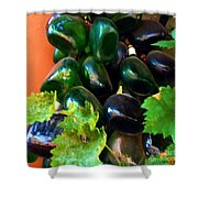 Wine And Grapes Full Circle Shower Curtain