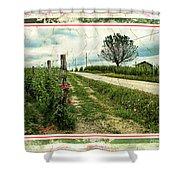 Wine And Roses. Brandini Winery Shower Curtain