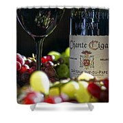 Wine Art Shower Curtain