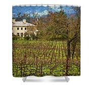 Wine Country California 1 Shower Curtain